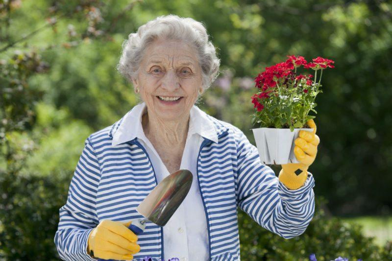 Home Care - Gardening & Planting Hobbies