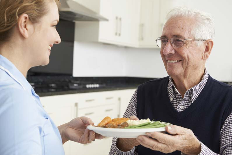 Meal planning for seniors services